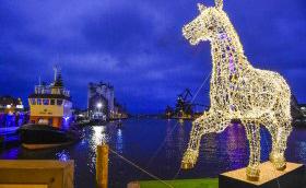 Lyshesten på havnen